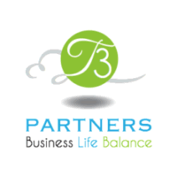 T3 Partners